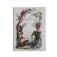 Petit cahier d'écolier modèle Histoires naturelles
